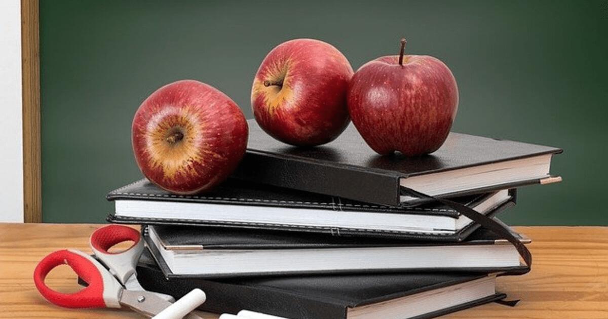 insegnanti di italiano per stranieri