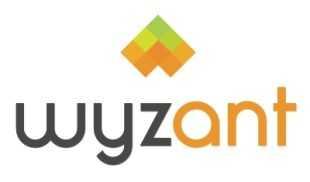 Insegnare italiano online negli USA con Wyzant