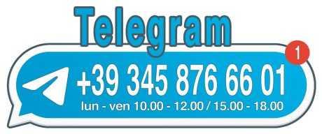 Chiamaci al numero +393458766601, anche su Telegram, dal lunedì al venerdì dalle 10.00 alle 12.00 e dalle 15.00 alle 18.00
